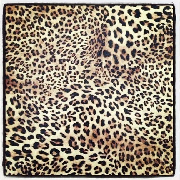 flexfolie luipaard